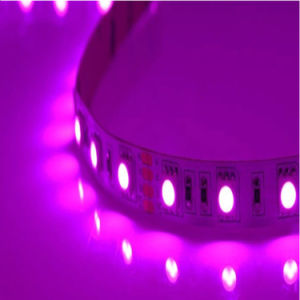 Pink Color LED Light Bar pictures & photos