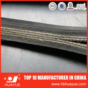 Quality Assured Nn200-1000 Nylon Canvas Conveyor Belt pictures & photos
