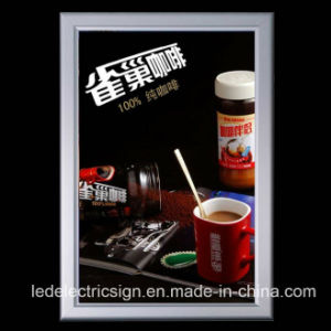 Advertising Display for LED Light Box pictures & photos