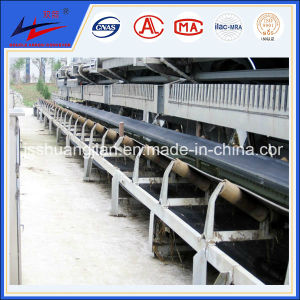 Double Arrow Conveyor System pictures & photos