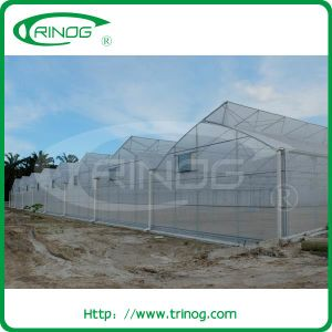 Multi Span Plastic Film hydroponic Greenhouse for H Bed System pictures & photos