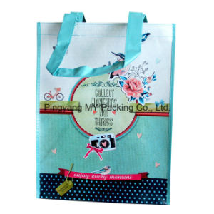 Cmyk Colorful Print Laminated Non Woven Promotion Bag pictures & photos