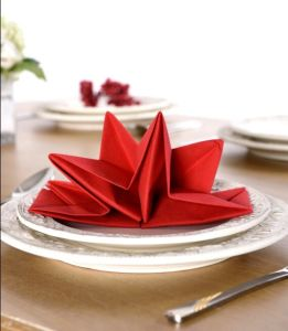 Bright-Coloured Folded Napkin for Resturant