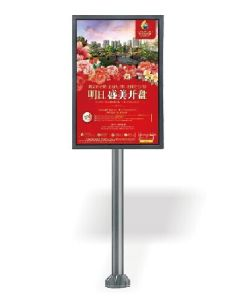 Multi-Function I-Phone Series LED Player for Removable Advertising 3G/WiFi/Video pictures & photos
