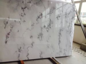 China Kalala White, China Flower White Marble for Wall, Flooring