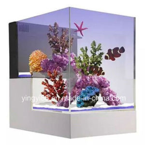 2018 New Style Creative Acrylic Fish Tank pictures & photos