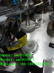 Soft Plastic Hose Filling and Sealing Machine (B. GFN-301) pictures & photos