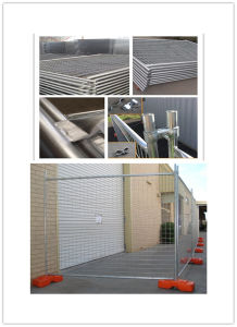 Australia Temporary Fence (20 years ISO factory) pictures & photos
