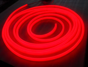 CE, RoHS Approved Red LED Neon Tube Light pictures & photos