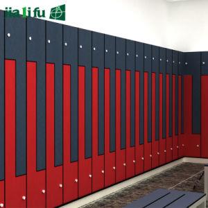 Fire-Retardant Solid Color HPL Lockers pictures & photos