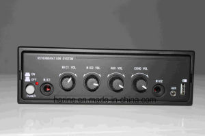 12V Car Amplifier pictures & photos