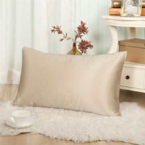 Chocolate Color 100% Mulberry Silk Pillowcase for Summer pictures & photos