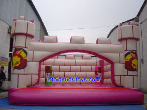 Commercial Use Inflatable Bouncer Used for Recreational Purpose (A138) pictures & photos