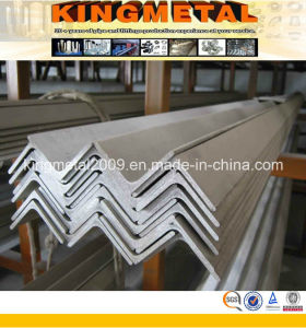 60mm 304L Stainless Steel Angle pictures & photos