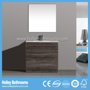 Australia Style Popular Modern Stainless Steel Furniture Vanity Units (BC111V)