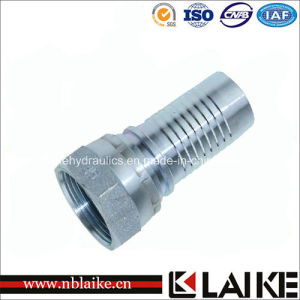 (22611) Bsp Female Thread Forged Reusable Hydraulic Hose Fittings