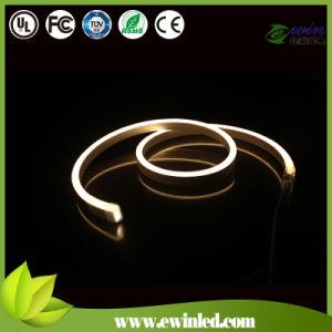 (120V) International Standard DMX 512 SMD LED Neon pictures & photos