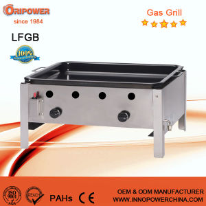 LFGB CE Approval 2-Burner Gas BBQ Grill pictures & photos