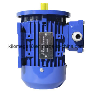 Industry Electric Motor B5 Installed Type for Exporting pictures & photos