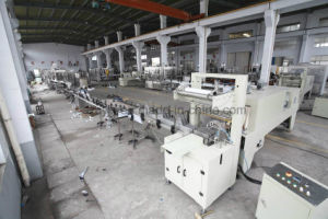 Ycd Heat PE Shrink Packing Machine pictures & photos