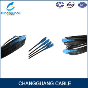 FTTH Drop Cable Pigtail 2 Cores Cable pictures & photos