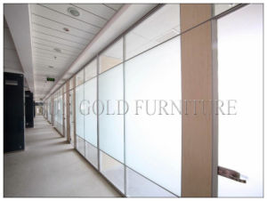Modern 12mm Tempered Frosted Glass Office Partition Wall (SZ-WS573) pictures & photos