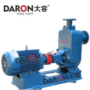 Horizontal Non-Clog Centrifugal Sewage Pump (ZW)