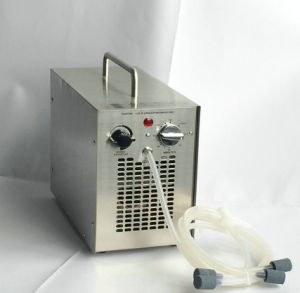 Portable Ozonator for Water & Air Purification 5000 Mg/Hr pictures & photos