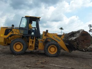 China Hot Sale 3 ton wheel loader with CE & ISO9001 pictures & photos
