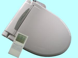 Modern Bathroom Tiolet Seat Cover Rsd3601 With Bulit In Bidet