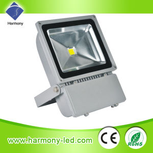 Hot Sale Outdoor IP65 100 Watts Floodlights pictures & photos