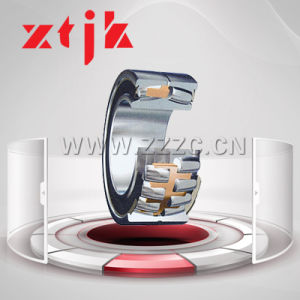 Double Row Radial Load Cylindrical Roller Bearing