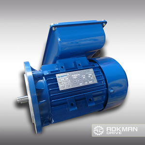 Aluminum Housing AC Motor with Brake pictures & photos