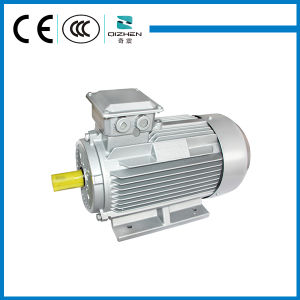 IE2 three Phase Asynchronous AC Induction Electric Motor for Fan pictures & photos