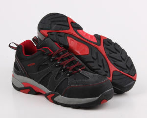Causal Style Sneaker Steel Toe Cap Safety Shoe pictures & photos