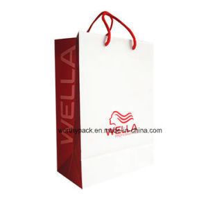 2016 New Design Offset Paper Gift Bag for Shopping pictures & photos