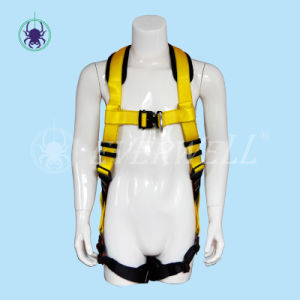 Full Body Harness, Safety Harness, Seat Belt, Safety Belt, Webbing with Two-Point Fixed Mode and EVA Protection Pad (EW0300H)