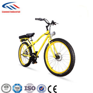 2017new Popular Tire Electric Bike pictures & photos