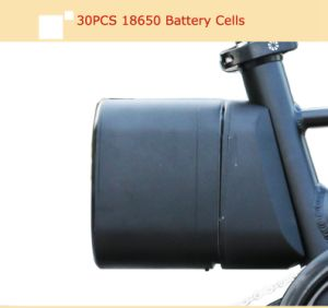 12 Inch Aluminum Alloy Folding Electric Bike Cms-F12 pictures & photos