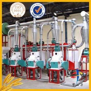 70tpd Wheat Flour Mill Plant pictures & photos