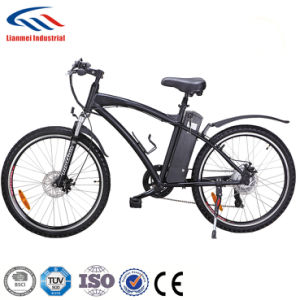 2017 Popular Fat Electric Bike with Ce pictures & photos
