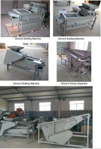 Almond Nut Sheller and Separator Machine pictures & photos