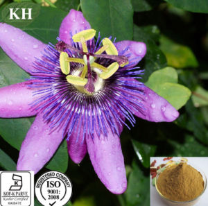100% Natural and Organic Passion Flower Extract Flavonoids 3% ~5% pictures & photos