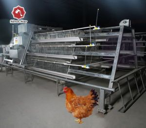 Silver Star Factory Outlet Price Poultry Farm Egg Layer Chicken Cages pictures & photos