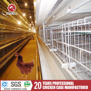 Large Animal Cage H Type Chicken Coop for Poultry Farm Building pictures & photos