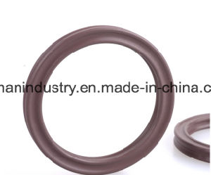 Quad Ring Selas Rubber X Ring FPM X Ring NBR Rubber X Ring pictures & photos