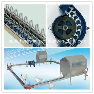 Automatic Poultry Breeder Chain Feeding Line System pictures & photos