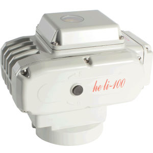 Electric Valve Actuator Hl-100 pictures & photos