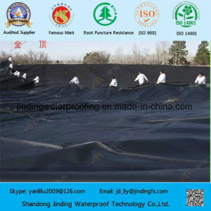 1mm HDPE Geomembrane Liner for Wastewater Treatment pictures & photos