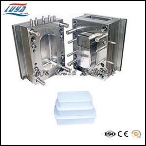 High Quality Plastic Preservation Box Mould